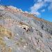 Das Bergsturzgebiet, ca. 100m breit und sehr lose, aber nicht sehr ausgesetzt. Hier muss man sich die beste Route suchen.