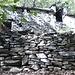 Cascine di Lasà, rovine affascinanti...