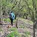 Unterwegs am Táhlina - Zu Beginn des Abstiegs, noch am südlichen Gratrücken.