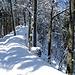 winterlich-sonniger Weiterweg