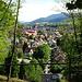 Blick vom Wanderweg auf Waldkirch