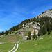 auf diesem Alpweg geht es quer durch die Neuenalp bis zu einer Alp die in der nähe vom Schlofstein ist.