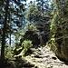 der Aufstieg zum Stinglfelsen, bei Nässe sicher heikel, wegen der glatten<br />Holzstufen
