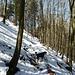 auf dem Weg zwischen der Bättlerchuchi und Hochchrüz liegt noch etwas Schnee