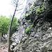Der Beginner Klettergarten mit vielen 4-5er Routen