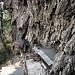 Ein Schrein unter den seltsamen Felswänden