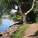 Am Lac de Neuchâtel.