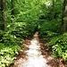 schöner Wanderweg II