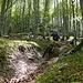 flotter Trail