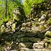 Liebevoll gestalteter Weg mit wildem Ambiente