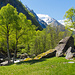 Eine tolle Mischung aus saftig grünen Bäumen und Felsbrocken beherrscht die Wanderung durch das Val Calnégia