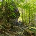 Auf wildromantischem Weg geht es weiter ins Val Calnègia hinein