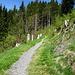 Wanderweg Richtung Piketfelsen