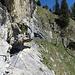 Auf einem schmalen, ausgesetzten Band erreicht man den zweiten Einschnitt. Der Ausstieg zur Weide bei Wang führt links an den Tannen hoch.