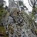 ... verläuft die oft nur knapp erkennbare Wegspur lange unter imposanten Fels-Kletterwänden hindurch ...