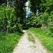 Bei Bachern folgt man nach der Brücke geradeaus der Straße bergauf, welche recht bald in einen Forstweg übergeht. Quasi im Schatten verborgen ist dabei die rote Schranke.