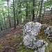 Von oben her ist das Band nicht so gut zu sehen. Bei diesem Stein führt die Spur hinunter.