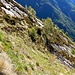 Il sentiero Monte Corgell - Piano Cursgell