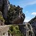 Spektakulärer Strassenverlauf in den Gorges de Galamus