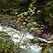 gleich neben dem Parkplatz empfängt mich ein kleiner Wasserfall des Gimbaches