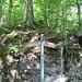 Der offizielle Bergweg zur Stauberen führt nicht mehr an diesem Wegweiser vorbei.