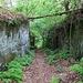 Felsenweg Ebelova cesta
