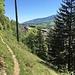 kleiner Trampelpfad oberhalb von Vallorbe