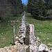 zurück an der Grenze - welche hier oft mit Steinmauern markiert ist