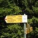 Weiter auf dem Wanderweg der mit dem Bike mit einigenTragstrecken aufwartet, nach Unter Willisberg