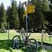 Beim 700 m langen Aufstieg zur Rossweidhöchi muss man das Bike schieben