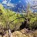Panoramica sul laghetto artificiale di Rodi