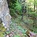 vorbei an Felsen zieht sich die Spur immer weiter in den Wald