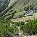 Im Legföhrenbereich oberhalb der Alp Nova