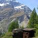 Mayen de Tschuggen et vue sur le Brunegghorn