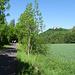 Milseburgradweg mit Schloß Bieberstein