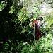 Abstieg durch Wald...