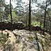 Der Rocher Forrer. Er ist für die Entstehung der Mauer von großer Bedeutung, da man hier Mauersteine gebrochen hat. Bis heute sind hier Sprengrinnen zu erkennen, und was aussieht wie Treppenstufen, blieb beim Heraussägen der Mauersteine zurück.