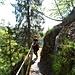 Man folgt einfach dem blauen Rechteck und quert dabei auf dem spektakulären Felsenweg die Steilhänge des Vogesenkamms.