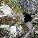 Unterwegs sollte man unbedingt auch die Grotte Dagobert besuchen...