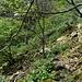 In den Geröllfeldern muss man allerdings etwas Acht geben, weil man auf Fels naturgemäß keine Wegspur sieht...