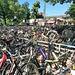 """nicht umsonst nennt sich Flachlandhausen """"die Fahrradstadt"""""""