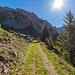 Kurz vor der Alp Tumli