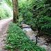 viel Wasser im Chesselbach