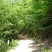 weiter auf dem Edersee-Radweg dem Stausee entlang