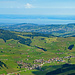 bester Blick vom Kronberg bis zum Bodensee