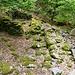Ruinen der einst stolzen Alp Laresino, welche schon im 19- Jahrhundert aufgegeben wurde