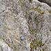Routenbuch Tomlishorn SW-Grat. Die unmittelbar folgende Rinne besteht aus eher brüchigem Gestein, im Gegensatz zum meist bombenfesten Kalk bis hier.