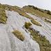 Schöne Kalkplatten mit Wasserillen