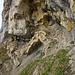 ... geht es diesem Felsbrücklein entgegen, das direkt überstiegen wird.