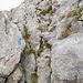Diese einzige Kraxelstelle führt direkt zum Wanderweg auf dem Gipfelplateau.